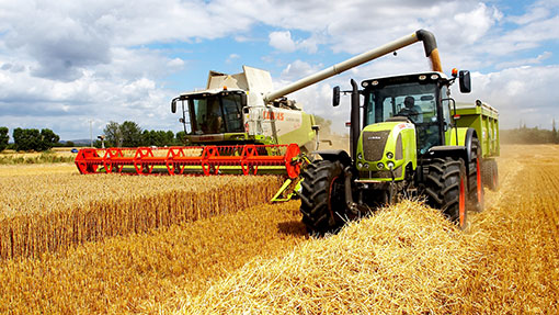 Image result for intensificationof agriculture uk