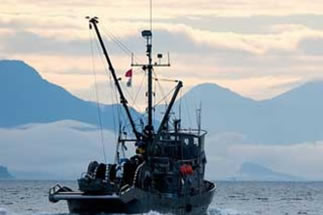 Image result for arctic fishing commercial