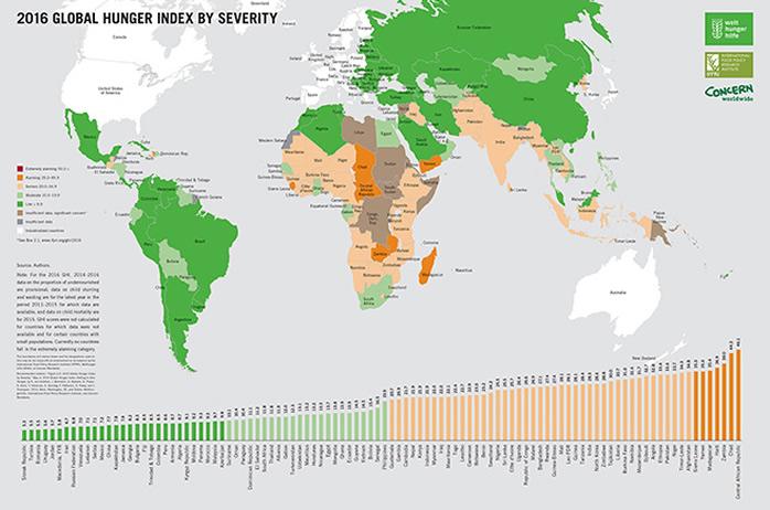 Image result for world hunger index