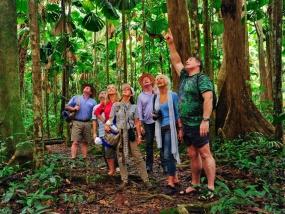 Image result for tourism rainforest