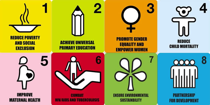 Image result for millennium development goals