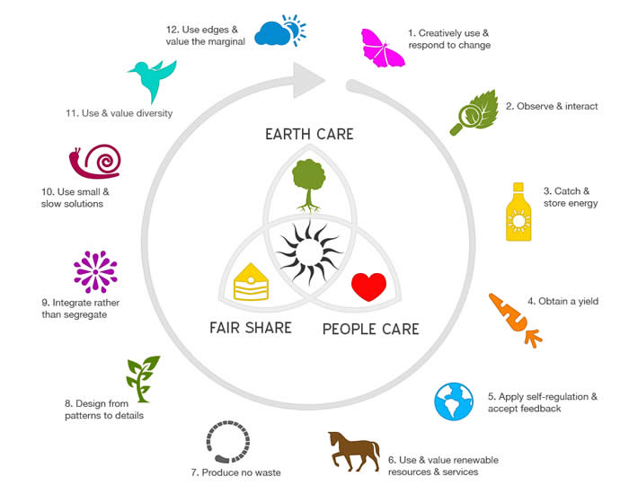 Image result for permaculture