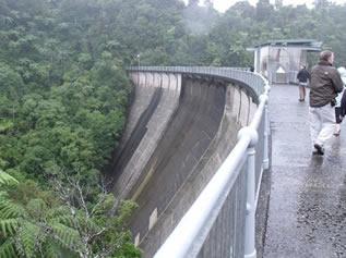 Image result for dam rainforest